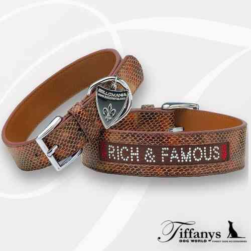 New York Rich & Famous