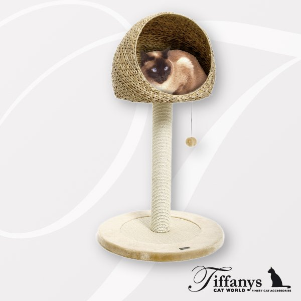 kratzbaum banana leaf ii hundehalsb nder online kaufen hundeleinen hundegeschirre. Black Bedroom Furniture Sets. Home Design Ideas