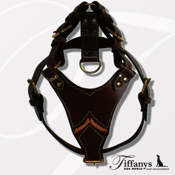 "Brustgeschirr ""Gladiator Brown/Gold"""