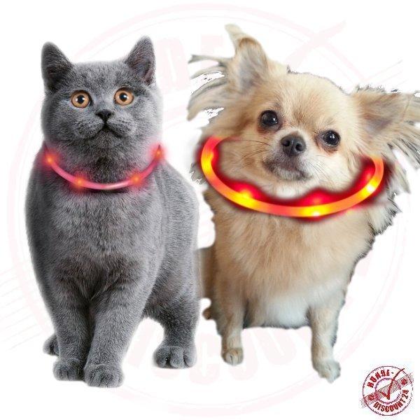 hundehalsband katzenhalsband led leuchtschlauch f r katzen und kleine hunde ebay. Black Bedroom Furniture Sets. Home Design Ideas