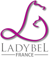 LADYBEL_Logo_FS_trans_m.png