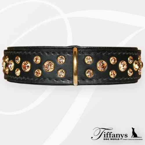 "Halsband ""Diamond Dog Black-Gold"""