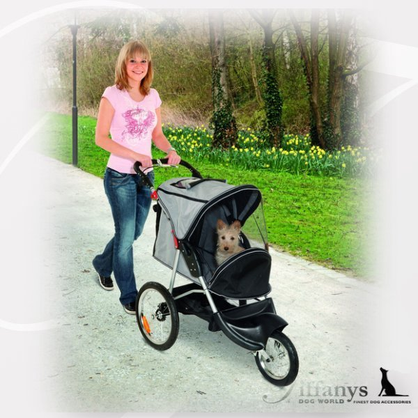 Buggy Sportive